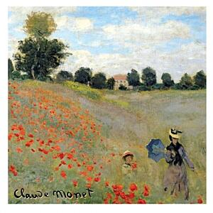 VONNÝ SÁČOK LE BLANC 8g - Coquelicots C. Monet Red fruits