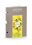 ESTEBAN, TESTER SPREJ 2,5 ML - CITRUSY