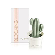 "PORZELLAN-MINI-DIFFUSER CHANDO BLOOMING - ""GOOD FRIEND"", ZITRONE&GRÜNER TEE"